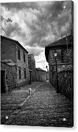 Castrillo De Los Polvazares Acrylic Print by Tom Bell