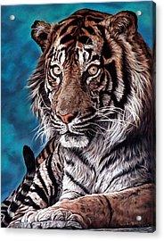 Castro Acrylic Print