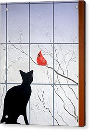 Cat And Cardinal Acrylic Print