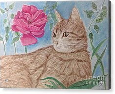 Cat And Flower Acrylic Print