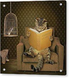 Cat And His Pet..... Acrylic Print by Iryna Kuznetsova (iridi)