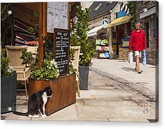 Cat And Restaurant Concarneau Brittany France Acrylic Print by Colin and Linda McKie