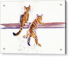Cat-astrophe Acrylic Print