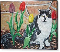 Cat By The Tulips  Acrylic Print