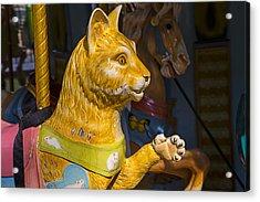 Cat Carrousel Ride Acrylic Print by Garry Gay