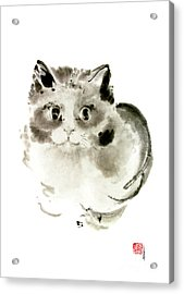 Cat Cats Kitten Funny Meow Animal Pet Ink Painting Acrylic Print