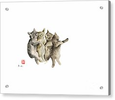 Cat Cats Photo Picture Brown Gray Little Funny Pic Meow Watercolor Painting Acrylic Print