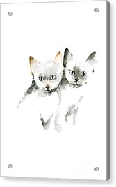 Cat Cats Photo Picture Brown Gray Little Funny Twins Pic Meow Watercolor Painting Acrylic Print