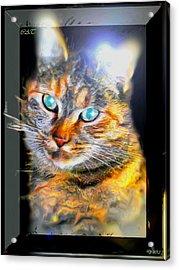 Acrylic Print featuring the digital art Cat by Daniel Janda
