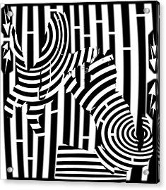 Cat Fight Maze Acrylic Print by Yonatan Frimer Maze Artist