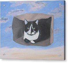 Cat In A Bag Acrylic Print