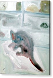 Cat In The Garage On A Mat Acrylic Print