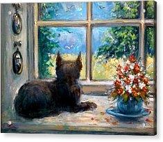 Cat In Window Acrylic Print