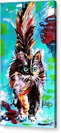CAT Acrylic Print by Melanie D