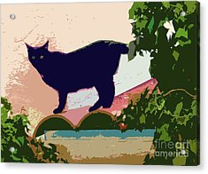 Cat On A Hot Tile Roof Acrylic Print