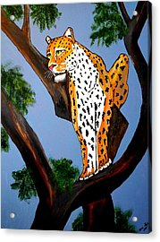 Cat On A Hot Wood Tree Acrylic Print by Nora Shepley