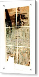Cat Perspective Acrylic Print by Jacqueline McReynolds