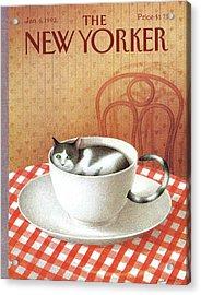 Cat Sits Inside A Coffee Cup Acrylic Print by Gurbuz Dogan Eksioglu