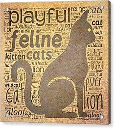 Cat Typography Acrylic Print