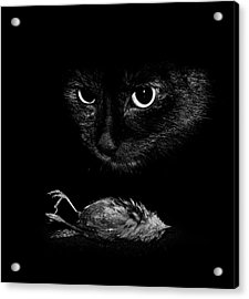 Cat With A Dead Bird Acrylic Print