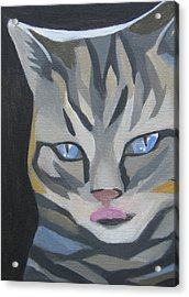 Cat With Tongue  Acrylic Print