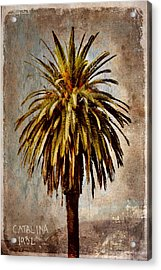 Catalina 1932 Postcard Acrylic Print by Carol Leigh
