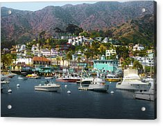 Catalina Express  View Acrylic Print by Joseph Hollingsworth