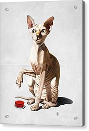 Catastrophe Wordless Acrylic Print