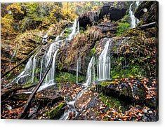 Catawba Falls Acrylic Print by Scott Moore