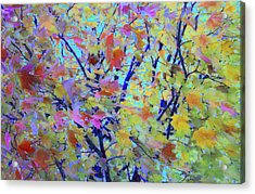 Catch Me If You Can Acrylic Print