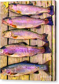 Catch Of The Day - Painterly - V1 Acrylic Print by Wingsdomain Art and Photography