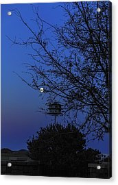 Catching Moonlight Acrylic Print