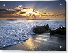 Catching The Light Acrylic Print by Debra and Dave Vanderlaan