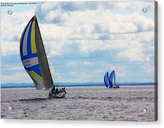 Catching The Wind Acrylic Print by Michelle and John Ressler