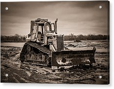 Caterpillar Acrylic Print by Doug Long