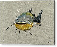 Catfish Acrylic Print by Juan  Bosco