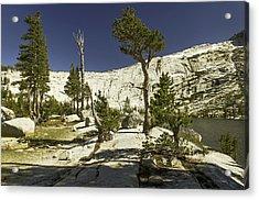 Cathedral Lakes-yosemite Series 20 Acrylic Print by David Allen Pierson