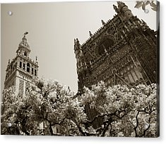 Cathedral Of Seville Acrylic Print