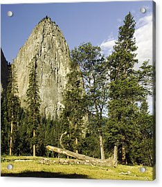 Cathedral Spires-yosemite Series 04 Acrylic Print by David Allen Pierson