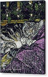 Catnap Acrylic Print by Robert Goudreau
