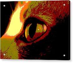 Cat's Eye Abstract  Acrylic Print by Ann Powell