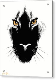 Cat's Eyes Acrylic Print by Aaron Blaise