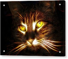 Cat's Eyes - Fractal Acrylic Print