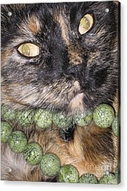 One In A Million... Beauty Of Cat's Eyes. Hello Pearl Collection Acrylic Print