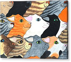 Cat's On Parade Acrylic Print
