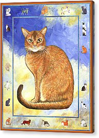 Cats Purrfection Two - Abyssinian Acrylic Print by Linda Mears