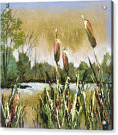 Cattails At Forest Park Acrylic Print