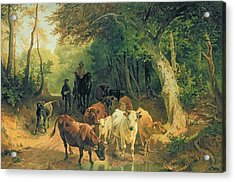 Cattle Watering In A Wooded Landscape Acrylic Print
