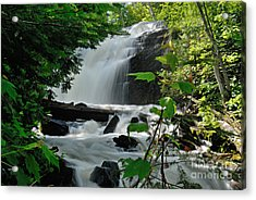 Cattyman Falls Acrylic Print