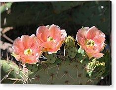 Cactus Plus Friend Acrylic Print